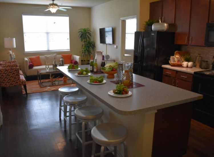 Unit - Kitchen and Living Room
